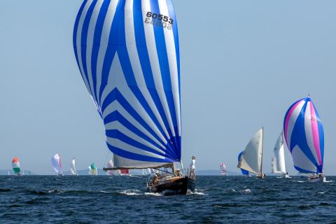 Camden Classics Cup draws record number of boats