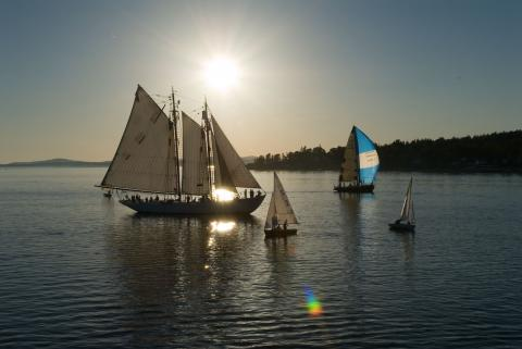 Tall Ships set sail in the Penobscot River July 9-18