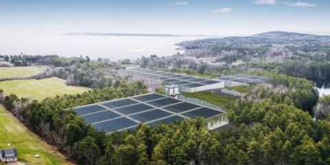 Company will move forward with permit applications for land-based salmon farm