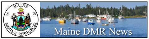 Lobsterman charged with fishing violations