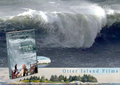 Waves by Otter Island Films